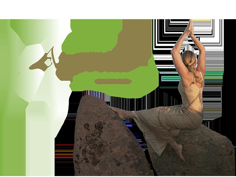 was bedeutet ayurveda